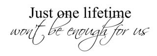 Just One Lifetime WonT Be Enough Wall Vinyl Decal Art Sticker 4 Sizes