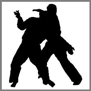 Karate Martial Arts Fight Sports Figure Auto Car Truck Window Sticker