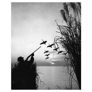 Wall Art  Posters  Man duck hunting Poster