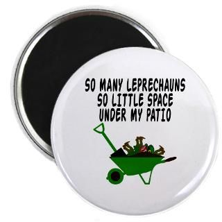 Funny Leprechaun shirts for St Patricks Day  Bignumptees funny,rude