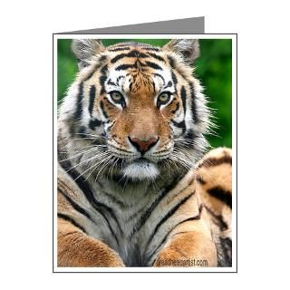 Exotic Feline Rescue Center 156 Tiger Note Cards (