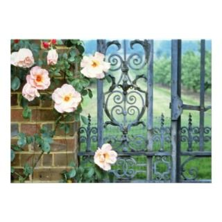 Rose And Wrought Iron Gate flowers Custom Invitation
