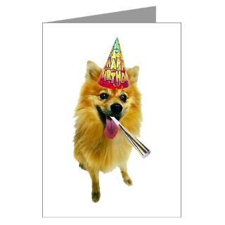 Pomeranian Birthday Greeting Cards  Buy Pomeranian Birthday Cards