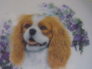 Cavalier King Charles Spaniel Pet Dog Feeder Bowl Porcelain China for