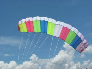 3M Skywalker Dual Line Parafoil Power Stunt Sport Kite