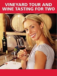 Red Letter Days Vineyard Tour and Wine Tasting for Two