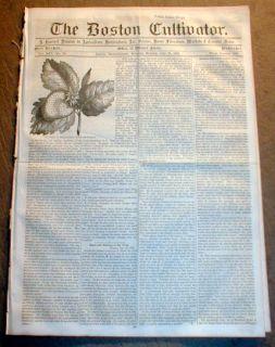 Newspaper New York City Draft Riots Lee Gettysburg Proclamation