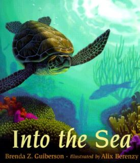 Into The Sea Oceanography Sea Turtle Life Cycle