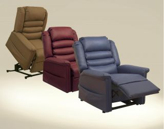 Catnapper Invincible Power Lift Recliner