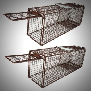 Live Animal Trap Skunk Racoon Cat 31x9x11 Cage Rabbit Box