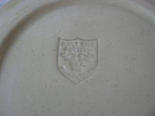Maple City Pottery Salt Glaze Salad Plate Cobalt Blue Flags Monmouth