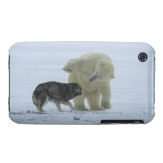 Churchill, Manitoba, Canada.ursus Maritimus iPhone 3 Cover