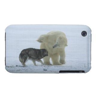 Churchill, Manitoba, Canada.ursus Maritimus iPhone 3 Cover