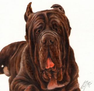 Oil DOG Portrait Painting NEAPOLITAN MASTIFF Art Artwork from Artist