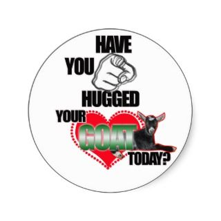HAVE YOU HUGGED YOUR GOAT TODAY? ROUND STICKER