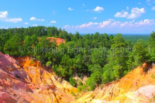 Photo Print Red Bluff Mississippis Little Grand Canyon Landscape Art