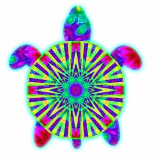 Colorful Sea Turtle Photo Sculpture