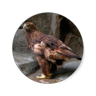 Golden Eagle Round Stickers