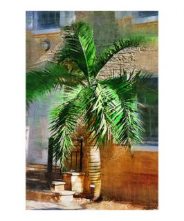 Pseudophoenix palm tree   Tropical Collection   Palms & Landscape , Miami , FLorida Giclee Print by Palm Images