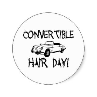 Convertible Hair Day Stickers