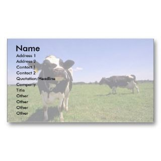 Holstein Dairy Cattle Business Card Template