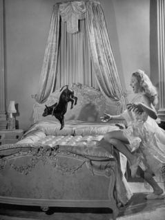 Christine Norden, Scantily Dressed, Trying to Catch a Dog Who Seems to Be Jumping on the Bed Premium Photographic Print by Nat Farbman