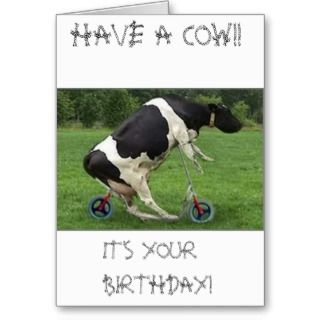 Cow Greeting Cards, Note Cards and Funny Cow Greeting Card Templates: popscreen.com/p/mtmyndk2mdgz/amazoncom-portuguese-birthday-funny...