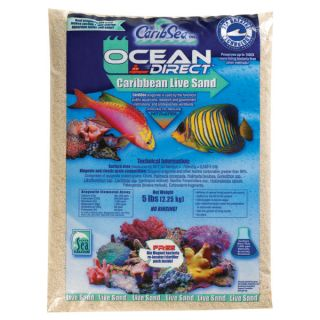 Ocean Direct Caribbean Live Sand   Saltwater   Fish