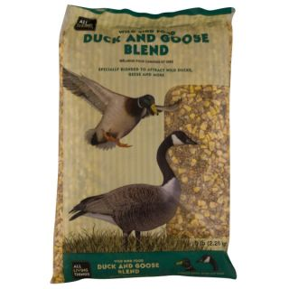 Wild Bird Seed, Wild Bird Food & Suet