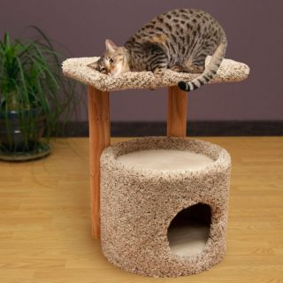 Grreat Choice™ Kitty Condo with Perch   Sale   Cat