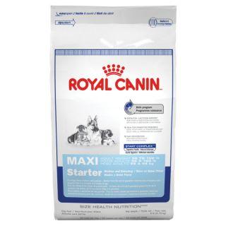 Royal Canin Maxi Starter Mother & Baby Dog   Food   Dog
