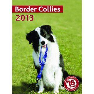 Kalender 2013 Border Collie   Wandkalender   Trixie