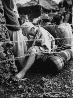 Japanese POW Sitting Behind Barbed Wire Fence After Capture Within Last 24 Hours of Okinawa Battle Premium Photographic Print
