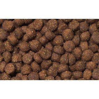 Bewi Dog Puppy gravy   Welpenfutter 15kg Haustier