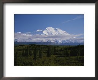 View of the tallest mountain in North America, Mt. McKinley Prints by Stacy Gold