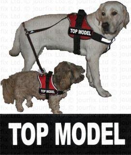 TOP MODEL 1x Logo klein weiß für Julius K9® Hundegeschirr Geschirr