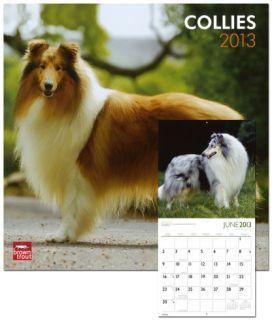 Collies   2013 Wall Calendar Calendars