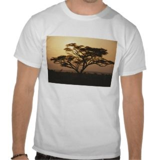 Sunset through a silhouetted acacia tree, Tanzania T shirts