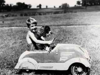 Boy Driving Toy Car, With Springer Spaniel Dog in His Lap Photographic Print by H. Armstrong Roberts