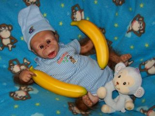 REBORN MONKEY CHIMP BABY Boy ORANGUTAN OOAK ART DOLL~TOO CUTE Must C