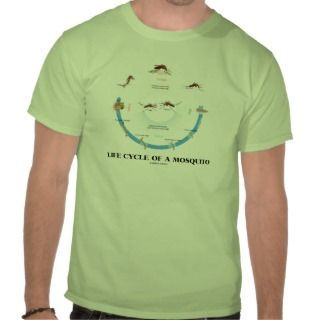 Life Cycle Of A Mosquito (Egg Larva Pupa Imago) T shirts