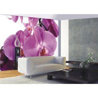Große Orchidee Blume Blüte Foto 360 cm x 254 cm: Baumarkt