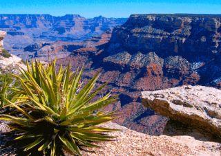 3D Postkarte Grand Canyon National Park, USA