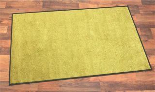 Schmutzfang /Türmatte Astra Proper Tex Uni grün
