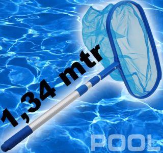 schwimmenten für gartenteich