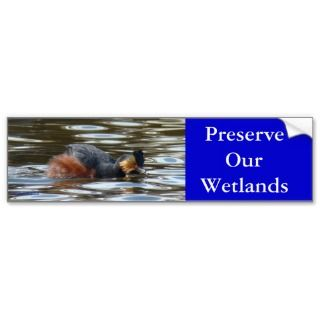 B0008 Eared Grebe Bumper Stickers