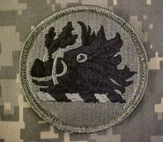 Georgia National Guard ACU Patch: Clothing