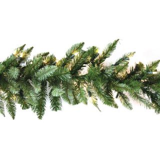 Good Tidings 96431 100 Clear Lights/ 240 Tips Douglas Fir Blue Green