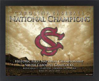 South Carolina Gamecocks 2010 National Champions Baseball