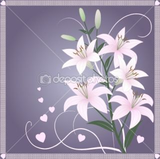 Beautiful spring wallpaper with lily flowers  Vector Stock © Alona